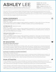 Artist Resume Template Free Luxury Creative Makeup Artist Resume For