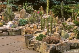 Small Picture Succulent Rock Garden Ideas Free Find This Pin And More On Alpine