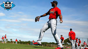 2015 Nl Central Preview The Cardinals Dont Care About Your