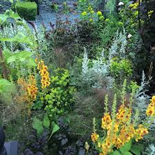 how to plant garden. Show Garden At Chelsea How To Plant