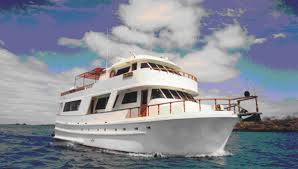 Image result for Darwin yacht galapagos