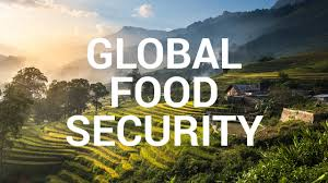 Impact Story Global Food Security