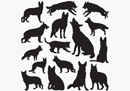 Download free german shepherd vectors and other types of german shepherd graphics and clipart at freevector.com! German Shepherd Silhouette Svg Free Svg Cut Files Create Your Diy Projects Using Your Cricut Explore Silhouette And More The Free Cut Files Include Svg Dxf Eps And Png Files