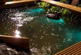 koi pond lighting ideas. Awesome Fish Pond Lights Underwater Lighting 2 On Koi Ideas