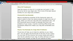 Know2Day Common Dog Skin Problems Effective Home remedies for Itchy ...