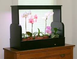 lighting indoor plants. lighting indoor plants n