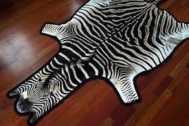 post post zebra skin rug south africa