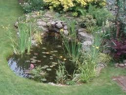splash out on a pond kebur