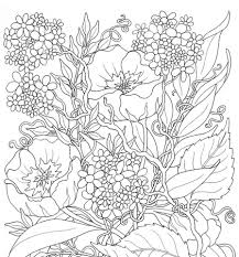 Small Picture Coloring Pages The Very Hungry Caterpillar Activities Butterfly