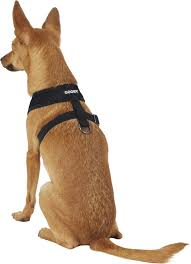 Gooby Size Chart Gooby Comfort X Mesh Dog Harness Black Medium