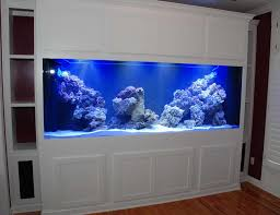 furniture aquarium. mesmerizing aquarium furniture design ideas curtain in view