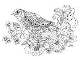 the bird my personal colouring book by wilwarinn