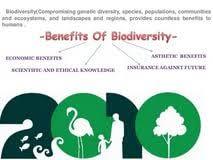 essays on biodiversity students for change essay writing essay biodiversity essay uk