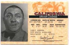 Drivers License Site - Forum Al Als Bundy