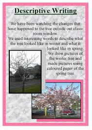 winter and spring tree descriptive writing pdf flipbook winter and spring tree descriptive writing