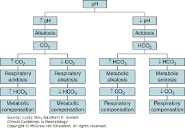 Respiratory Metabolic Acidosis Alkalosis Chart Acidosis And Alkalosis Clinical Guidelines In Neonatology