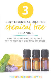 essential oils are one of natures antibacterial options for homemade cleaning recipes here i share