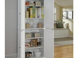 Kitchen Cabinet Racks Storage Kitchen 53 Impressive Kicthen Storage Solution Pull Out Storage