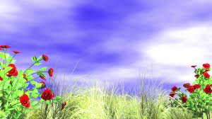 Best background images hd 1080p free ...