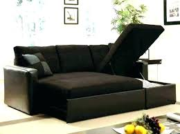 sleeper loveseats for small spaces best sofa sofas apartment therapy loveseat faux leather wayfair lo sleeper loveseats loveseat faux leather