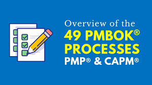 49 Processes Of Project Management Chart Overview Of The 49 Pmbok Processes Pmp Capm Exams 6th Edition