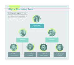 org chart tools for powerpoint organizational chart maker org chart software visme