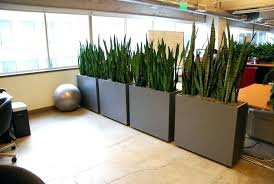 office space divider. office separator ideas divider room 1000 images about plant partitions and space