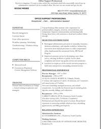 Combination Resume Examples Luxury Beautiful Executive Resume