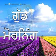 Good Morning Punjabi Quotes Best Of Good Morning Wishes In Punjabi Pictures Images Page 24