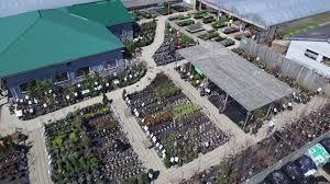 Garden Stores In London Ontario