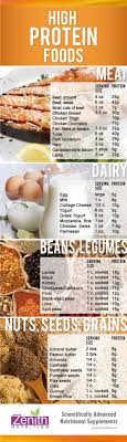 Protein In Seeds Chart Data Chart High Protein Food Meat Dairy Beans Legumes