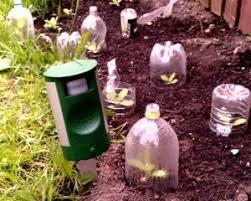 cat repellent for garden. Sonic Cat Repeller In Garden Repellent For L
