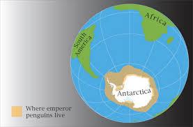 emperor penguin habitat map. Modren Map Emperor Penguins Habitat Map  Photo12 Throughout Penguin Habitat Map G