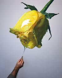hyperreal flower oil pastel drawings art by brian owens