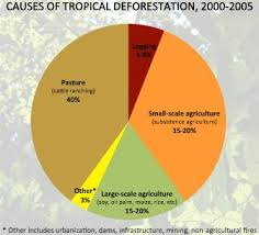 Pie Chart Showing Causes Of Tropical Deforestation Drivers