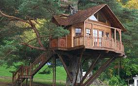tree house jaipur. 5 Tree House Resorts In India That Will Bring Out The Child You Jaipur C