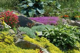 how to create a small scale rock garden