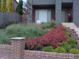 Small Picture Contemporary Native Australian Garden Contemporary Garden