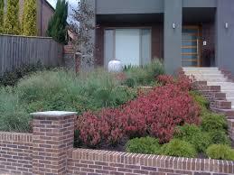 contemporary native australian garden contemporary garden