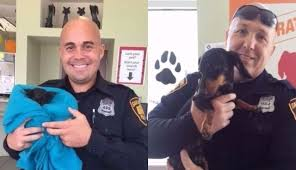 Animal Cop Cop Brothers Both Save Animals Who Were In The Middle Of