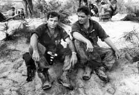 brilliant ideas of vietnam war essays great the war in vietnam   ideas collection photos of the vietnam war in 1965 humanity among the bloodshed brilliant the war
