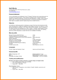 Resume Professional Summary Sample Resume Personal Summary Statement Copy Sample Summary 100