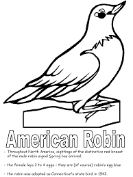 Small Picture American Robin coloring page