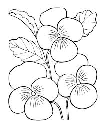 Cartoon Flower Coloring Pages Simple For Adults Very Page Vase