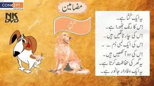 essay of my dog   urdu learning      youtube