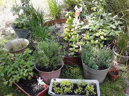 Small Picture Gardening Idea In Modern Home Design And Decorations Ideas