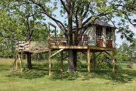 cool kid tree houses. Wonderful Tree Tree House Designs With Cool Kid Tree Houses