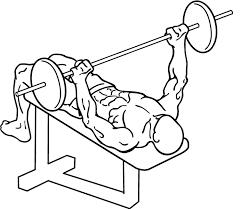 Barbell Decline Bench Press  Exercise Database  Jefit  Best Decline Barbell Bench