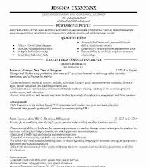 Business Development Objective Statement Example Of Business Resume Letsdeliver Co