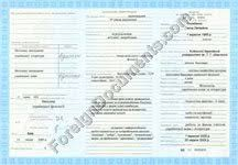 certified translation of transcripts addendum issued in ukraine translation of addendum to russia diploma